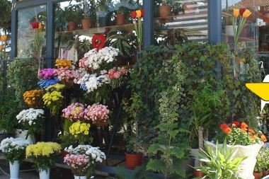 Scalable Same-Day Floral Delivery Solutions for Businesses
