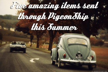 Five Awesome Items Sent With PigeonShip This Summer